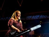 Певица Адель прекращает концертную деятельность