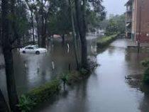 Проливные дожди обрушились на австралийский штат Новый Южный Уэльс