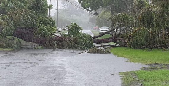 На северо-востоке Австралии бушует непогода
