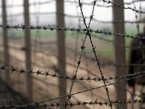 Кыргызстанцы, задержанные узбекскими пограничниками, вернулись на родину