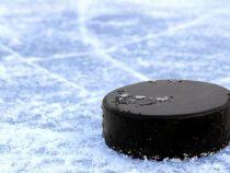 Чемпионат мира по хоккею в Бишкеке перенесен на май
