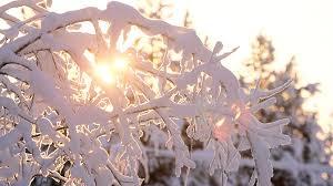 Эту зиму назвали самой тёплой за последние 140 лет