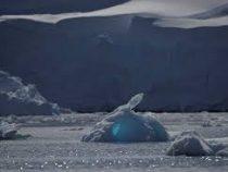 Температура в Антарктике впервые в истории поднялась выше 20 градусов тепла