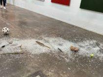 Художественный критик разбила экспонат стоимостью 20 тысяч долларов