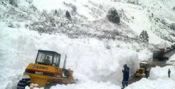 В Чаткальском районе сошла снежная лавина