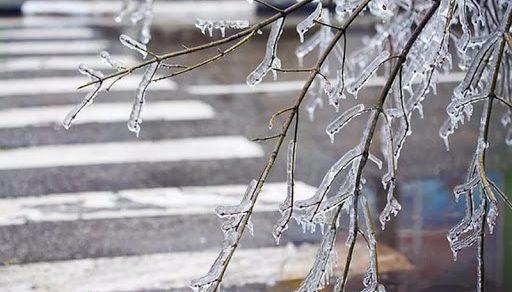 В Бишкеке сегодня  не исключен   ледяной дождь