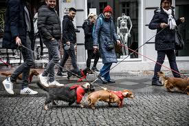 По улицам Берлина прошел парад из 50 такс