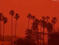 Тенерифе атаковали лесные пожары и песчаная буря