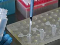 Россия передала странам ЕАЭС и СНГ средства для диагностики коронавируса