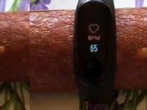 Фитнес браслет на колбасе показал пульс и давление