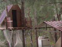 В Турции трое друзей построили дом на дереве