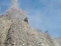 Участок дороги Бишкек – Нарын – Торугарт временно закроют для проезда