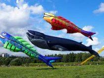 Симпатичные воздушные змеи чуть не унесли мужчину в небо