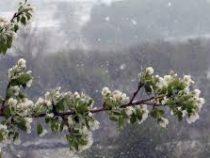 Штормовое предупреждение: с 25 марта ожидается неустойчивая погода
