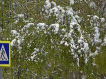 В Бишкек надвигаются снег и морозы