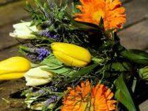 Как продлить жизнь цветочных букетов
