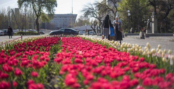 Синоптики рассказали о погоде на этой неделе в Бишкеке