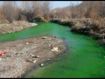 Специалисты выяснили, почему река Аламедин окрасилась в зеленый цвет