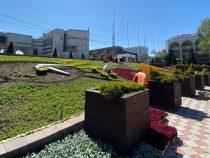 На площади «Ала-Тоо» появятся цветочные часы