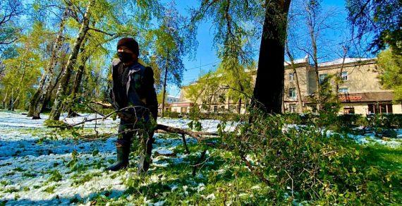 Столичные службы ликвидируют последствия снегопада