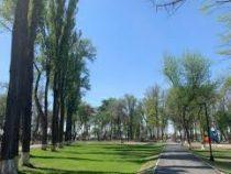 В Бишкеке продолжается строительство нескольких парков