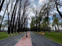Строительство нового парка в Бишкеке выходит на финишную прямую