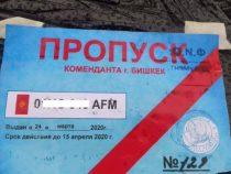 Орозалиев: Срок действия пропусков будет автоматически продлен