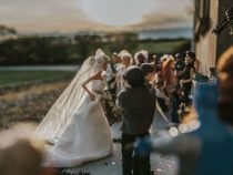 Фотограф сняла кукольную свадьбу как человеческую