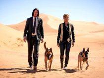 Премьера фильма «Джон Уик-4» перенесена на 2022 год