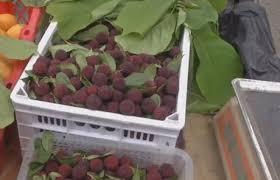 Торговка освежила фрукты и ягоды отвратительным способом