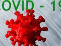 Американская разведка выясняет, откуда началось распространение коронавируса