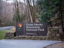 В выходные в США откроется самый посещаемый национальный парк Грейт-Смоки-Маунтинс