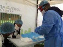 Учёные проверяют эффективность прививки БЦЖ против COVID-19