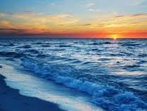 Разработчики Instagram спрятали хэштег #море