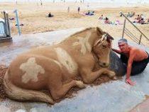 Мужчина создает из песка невероятные фигуры животных