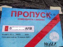 Пропуски для въезда в Бишкек продлеваются автоматически