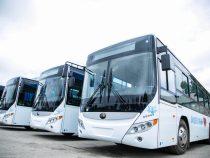 В конкурсе на поставку автобусов участвуют три компании