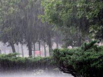 Ливневыми дождями завершится текущая неделя в Бишкеке