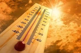 2020 год может стать одним из самых тёплых в истории