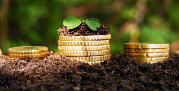 Фермеры получили почти 3,5 тысячи льготных кредитов