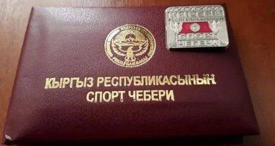 Пять спортсменов получили звание «Мастера спорта Кыргызстана»