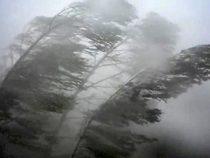 МЧС распространило штормовое предупреждение