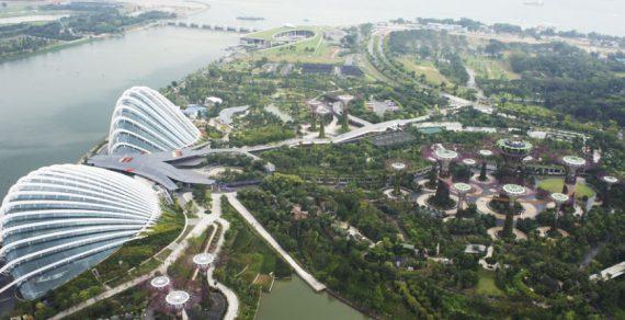Лучшим в мире местом для работы и бизнеса признан Сингапур