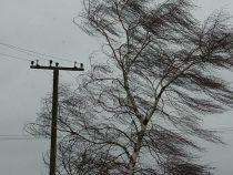 Непогода в регионах оставила после себя немало последствий