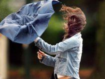В Бишкеке ожидается сильный ветер