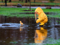 Начало августа в Бишкеке будет дождливым