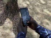 Мобильное приложение спасает от саранчи в Кении