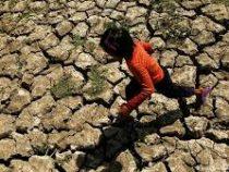 Ученые заявили о глобальном изменении климата в ближайшие годы