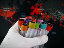 ВОЗ рассматривает 4 сценария распространения коронавируса