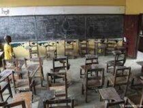 Около 10 миллионов детей по всему миру не вернутся в школу после пандемии